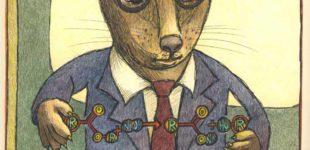 civet explains saponification