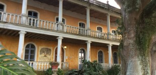 La Ceiba is housed in a restored Hacienda, dating back to the 16th century.