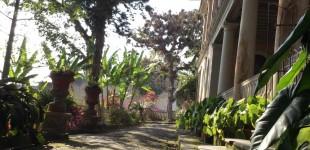 La Ceiba's front terrace
