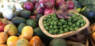 At the Organic Market, held every Saturday in Coatepec