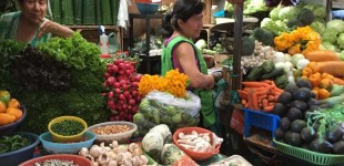 The market in Coatepec