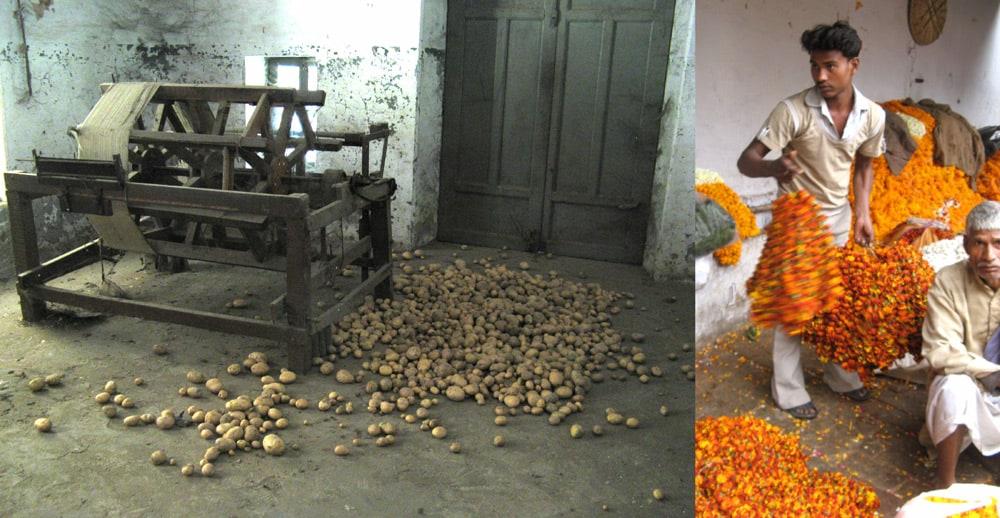 Erica Harris » Archive » Residency in Gujarat, India