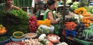 The market in Coatepec